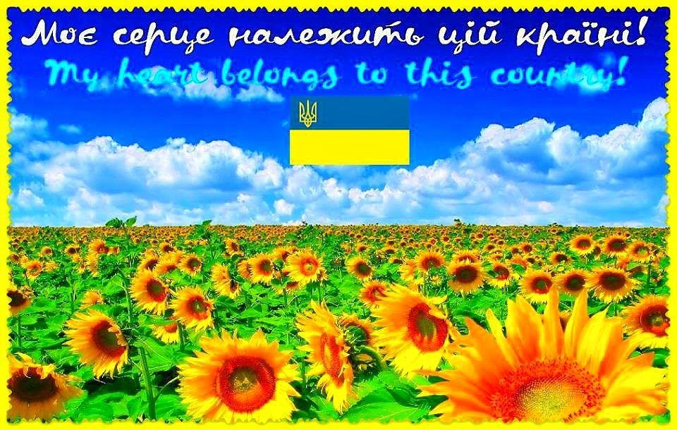 """Результат пошуку зображень за запитом """"картинки україна це ми"""""""